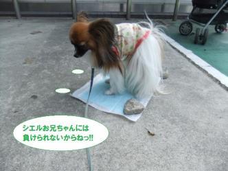 21-10_20111021132030.jpg