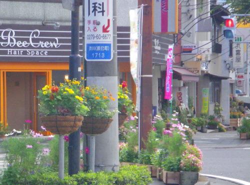 花いっぱい923