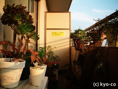 20111012002.jpg