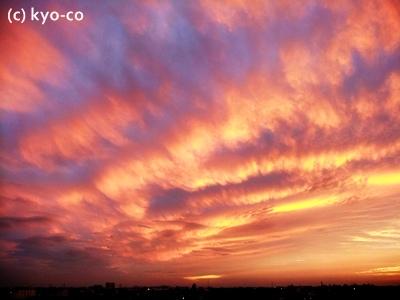 20111019003.jpg