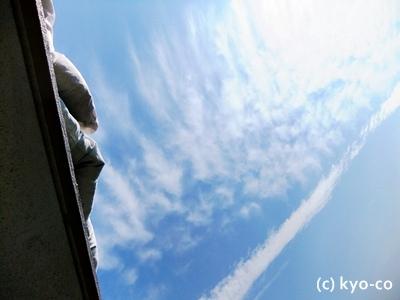 20111025006.jpg