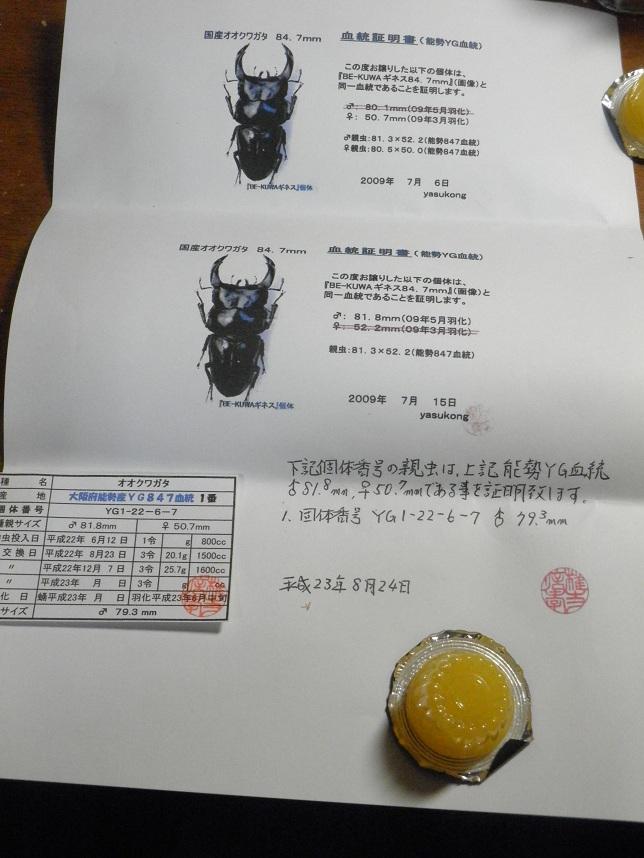 054_20120411174058.jpg