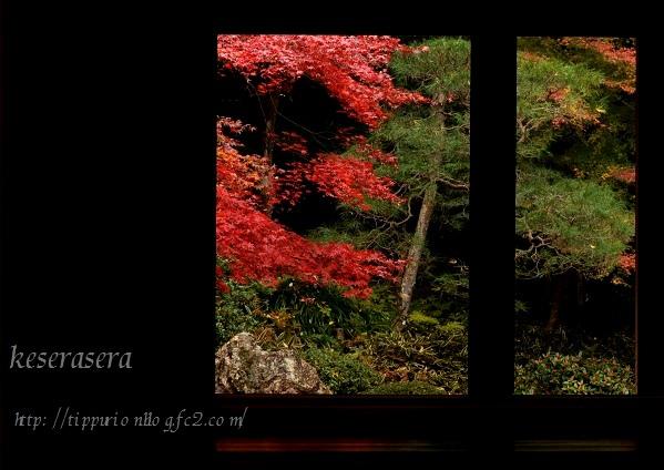 27京都DSC_0718
