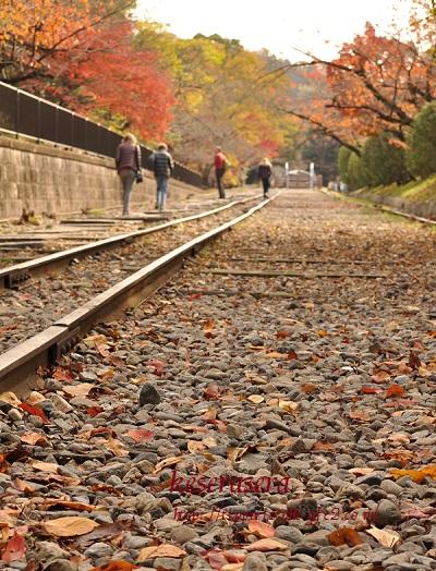 27京都DSC_0766