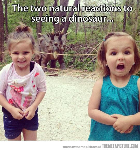 恐竜を見た女の子のimage