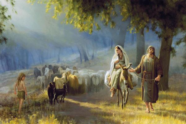 クリスマスイブの情景4(羊の群れ)image