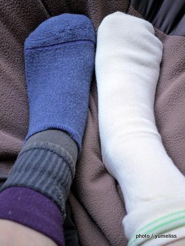 冷えとり靴下比較