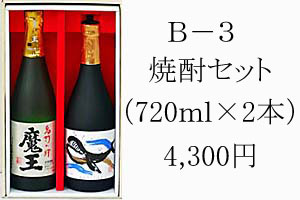 B-3 焼酎セット 4,300円