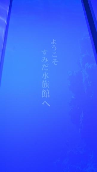 DSC_5382.jpg