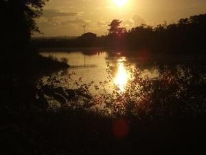 140925夕陽を浴びる