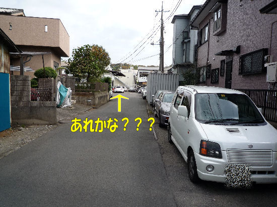 P1020762.jpg