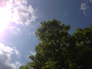 写真 1空画像JPG