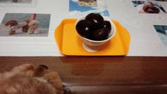 栗を食べましょう1