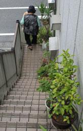 ばぁばとお散歩 2