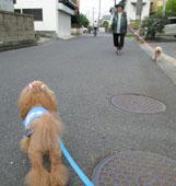 ばぁばとお散歩12