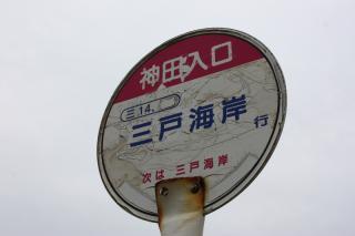 130323_KQmiura_mito_14.jpg