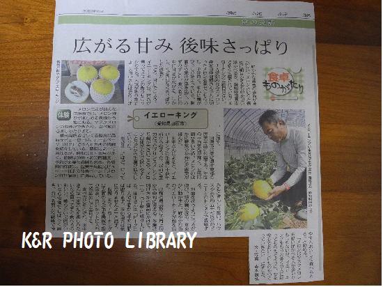 5月31日新聞記事