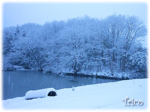 140208-雪景色