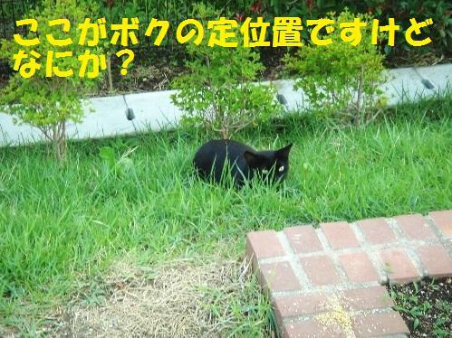 20111029_1.jpg