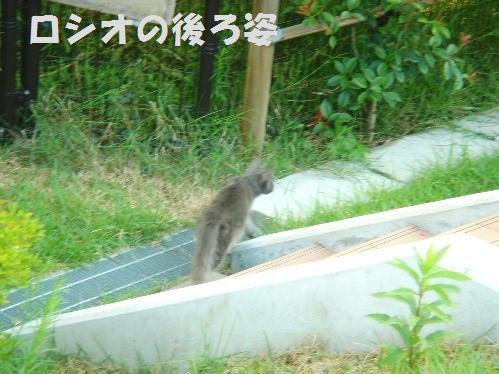 20111029_4.jpg