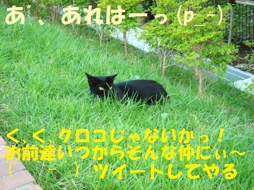 20111029_5.jpg