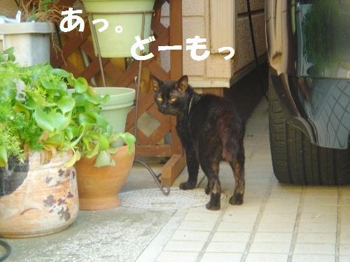 20111030_1.jpg