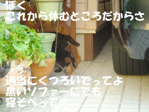 20111030_2.jpg