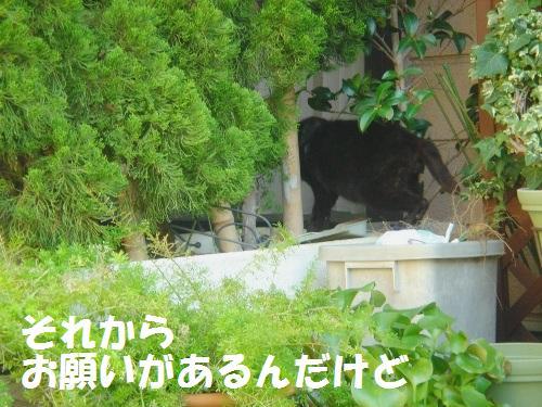 20111030_3.jpg