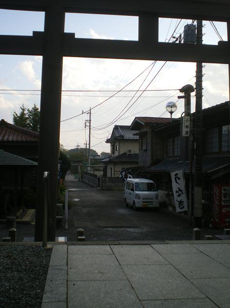 IMGP7881_R.jpg