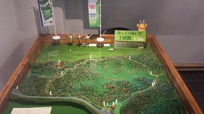 釧路湿原模型