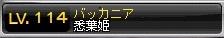 ブログ用22