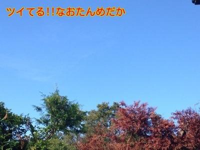 20141006194443472.jpg