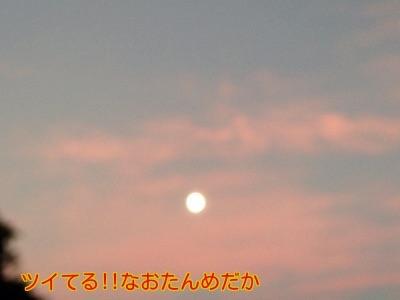 20141006194507b66.jpg