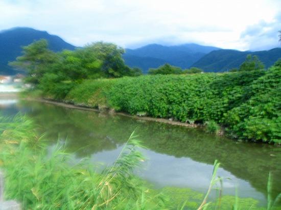 105_20111002150346.jpg