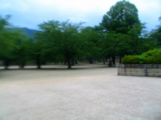 116_20111002152458.jpg