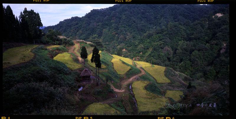 松之山 秋 6×12 800dpi 2