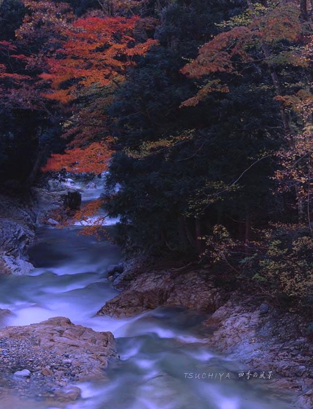 群馬県 宝川