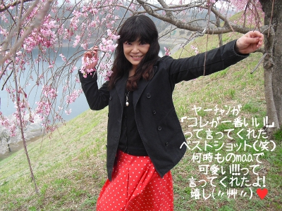 2013_3_29_Cherry_blossom05.jpg