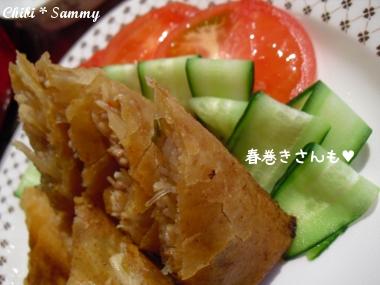 2013_4_19_negirai_gohan04.jpg