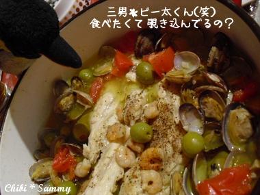2013_4_19_negirai_gohan08.jpg
