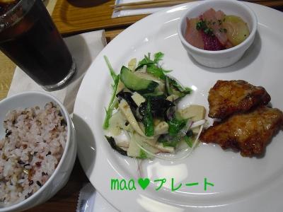 2013_5_20_maa_plate01.jpg