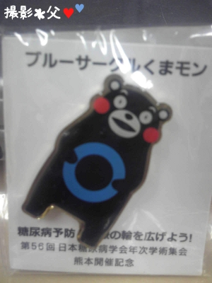 2013_5_21_kumamon_BC_from_chichi01.jpg