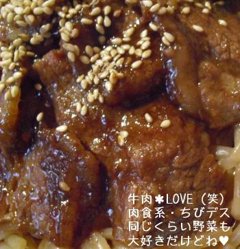 2013_5_30_yakiniku_plate04.jpg