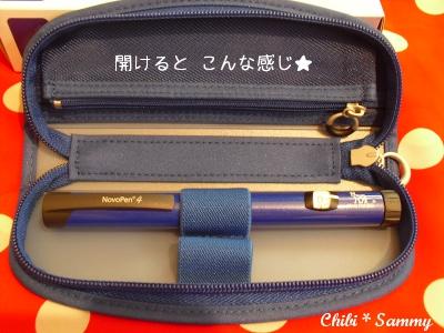 2013_7_9_ichigata_shinsatsu04.jpg