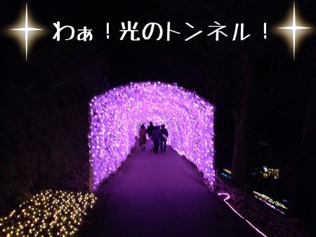 2014_12_15_from_ya_chan014.jpg