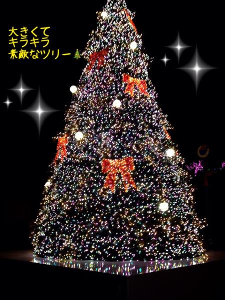 2014_12_15_from_ya_chan03.jpg