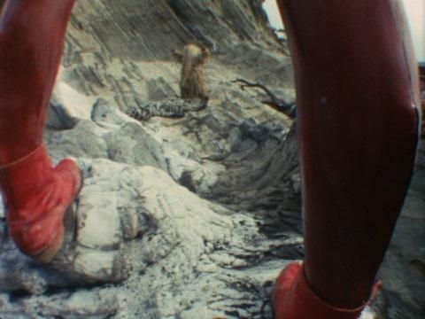 ウーとシーボーズの戦いを見つめるウルトラセブン