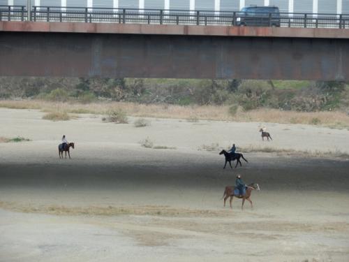 橋の下で乗馬!? (500x375)