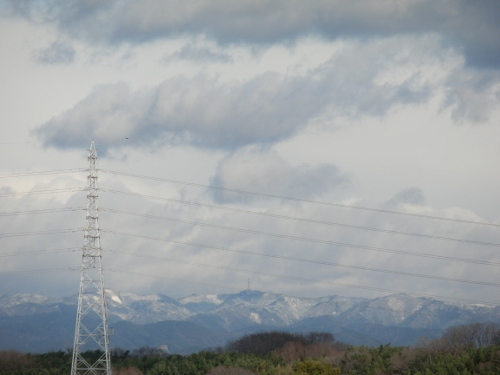 雪だねー (500x375)