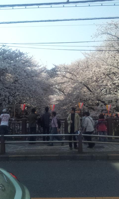 目黒川2012の1